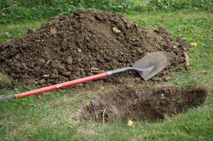 La solution du jardin pour cacher son or